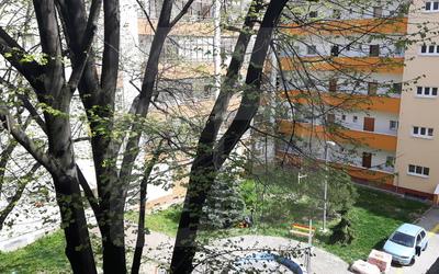 bratislava-nove-mesto-1-izbovy-byt-predaj-utulne-ale-skvele-byvanie-na-dobrej-adrese-44594