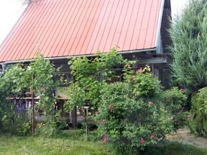 chata-chalupa-predaj-potrebujete-si-oddychnut-ponukame-na-predaj-zahradnu-chatku-na-8-arovom-pozemku-v-nitre-45977