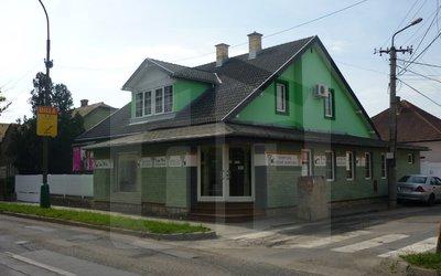 obchodne-priestory-prenajom-obchodny-priestor-s-vykladom-v-lucenci-45068